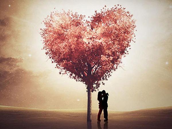 全世界宣布爱你