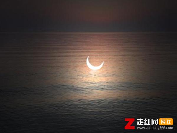 抖音白月光在照耀你才想起她的好是什么歌,白月光与朱砂痣歌曲介绍